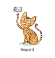 Leopard cat Cat character isolated on white vector image