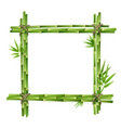frame from bamboo stems vector image vector image