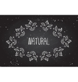 Hand-sketched herbal banners on chalkboard vector image