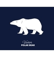 Polar bear hand drawn vector image vector image
