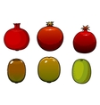 Green kiwi and pomegranates fruits vector image