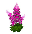 bright sprig of lilac flowers isolated vector image