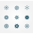 Beautiful snowflakes vector image