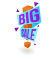 Big sale bright banner vector image