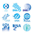 set of logos of dna vector image