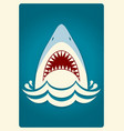 Shark jaws background vector image