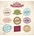 Set of autumn sales related vintage labels vector image
