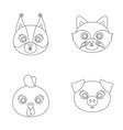 protein raccoon chicken pig animal s muzzle vector image