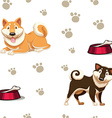 Seamless background with dogs and footprints vector image