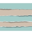 Set of torn craft paper pieces with rough edges vector image