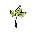green eco tree icon vector image