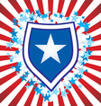 stars stripes Converted vector image