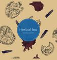 dried herbal thai tea seamless pattern vector image