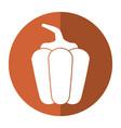 pepper vegetable healthy-shadow vector image