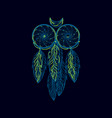 hand drawn native american dreamcatcher owl with vector image