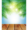 background with palm branches vector image