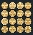 luxury golden empty design elements collection vector image