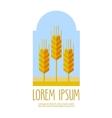 bread wheat logo design template farm or vector image
