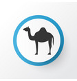 camel icon symbol premium quality isolated animal vector image