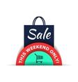Sale flat vector image