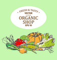 shop with organic farm products set on green vector image