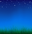 Nature night vector image vector image