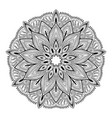 mandala highly detailed inspired vector image