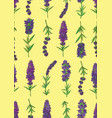 lavender-02 vector image