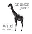 silhouette giraffe in grunge design style animal vector image