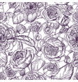 beautiful detailed pion-shaped rose seamless vector image