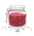 cartoon jam jar vector image