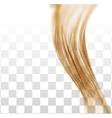 Closeup of long human hair vector image