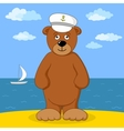 Teddy bear captain on sea coast vector image vector image