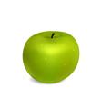 Grren Apple vector image vector image