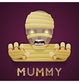 Halloween Party Mummy Role Character Bust Icon vector image vector image