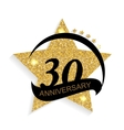 Template Logo 30 Anniversary vector image