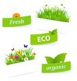 Paper Sticky With Green Grass And Flower vector image vector image