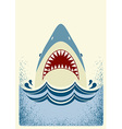 Shark jaws color vector image