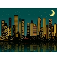 Cartoon night city vector image