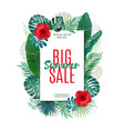 Sale banner poster with exotic leaves jungle vector image