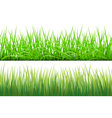 2 Backgrounds Of Green Grass Isolated On White vector image