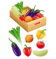 Organic vegetables fresh vector image vector image