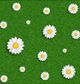 Background of grass and flowers image vector image