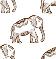 Seamless Pattern with Elephant vector image