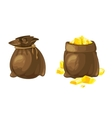 Set of two bags with gold vector image