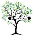 squirrel tree vector image