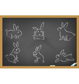 rabbits sketch drew on blackboard vector image