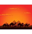 camels deserts vector image vector image