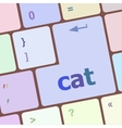 cat word on computer pc keyboard key vector image vector image