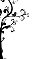 Abstract tree frame vector image vector image